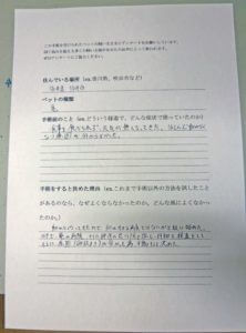 カメの卵詰まり 手術【大阪府堺市の動物病院】